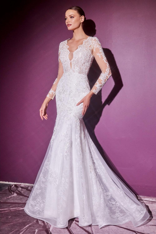 Vestido de novia corte sirena con mangas largas transparentes, bordado y escote pronunciado con un corpiño entallado y una falda sirena con espalda descubierta y cola de barrido